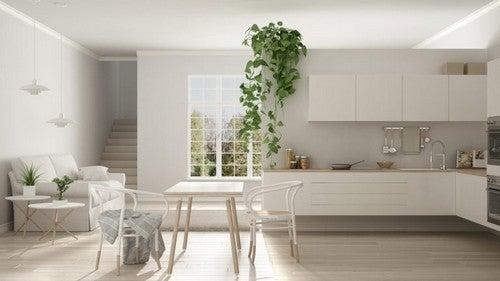 Køkken med planter og hvide elementer