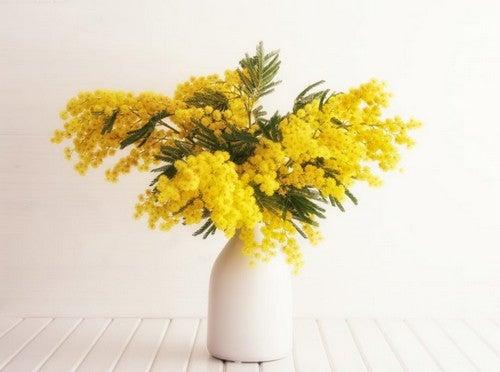 Hvid vase med gule blomster