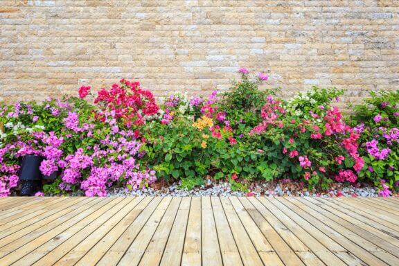 Farverigt blomsterbed ved terrasse.