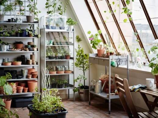 Reoler med planter på atelier.