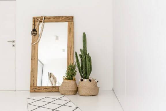 Kaktusser i entréen.