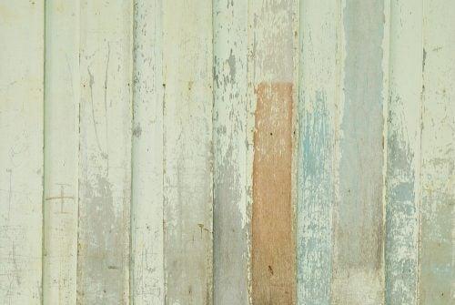 Grøn trævæg - træ til vægge og gulve.
