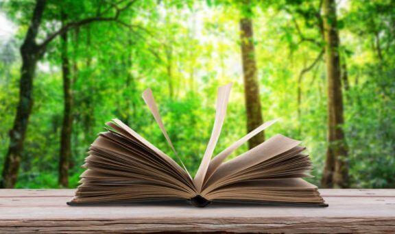 Åben bog udenfor.