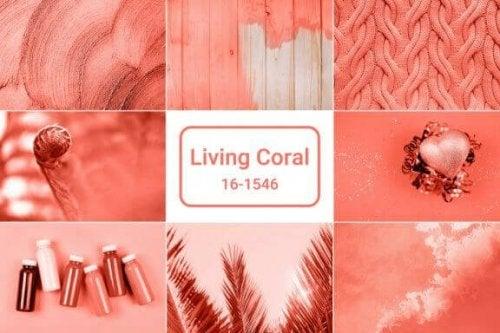 Årets farve 2019: Living Coral