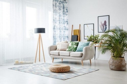 Palmetræer skaber et naturligt look i hjemmet