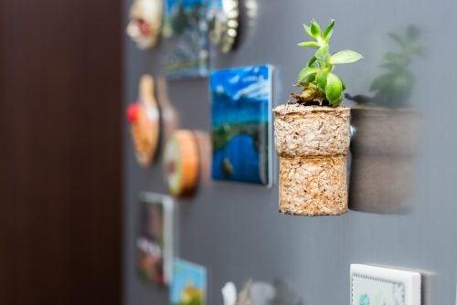 Mini-plante i korkprop.