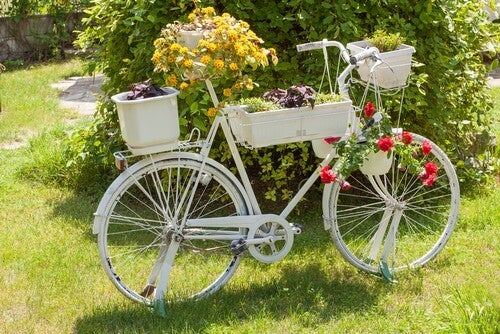 Hvid cykel med kurve og blomster