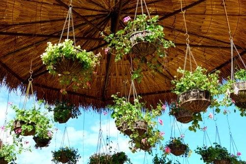 bryllupsdekorationer med planter