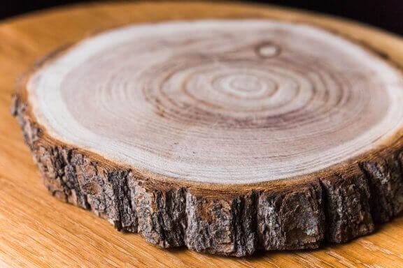 Skive af træ.
