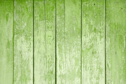 Greenery er navnet på en farve fra Pantone, der var årets farve i 2017.