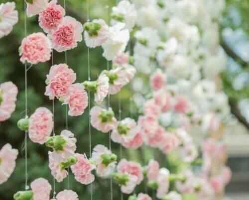 Blomster på snore kan bruges som dekoration af vinduer
