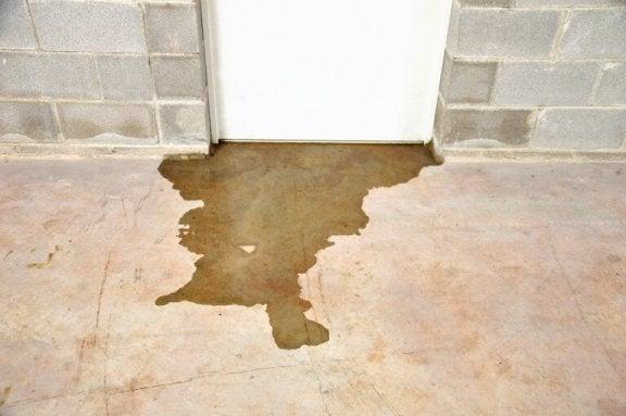 Fugt i din kælder: vand under kælderdør.