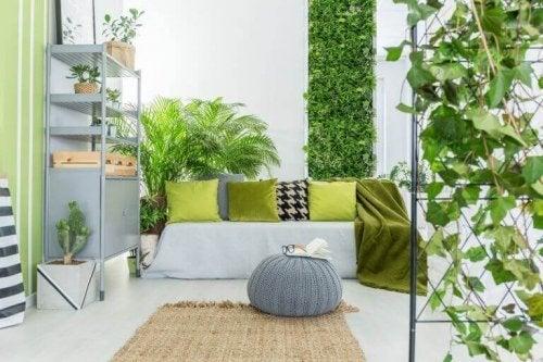 indretning med mange planter