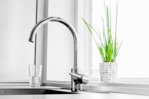 2 vandhaner, der filtrerer og mineraliserer vand
