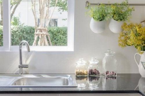 planter i køkken