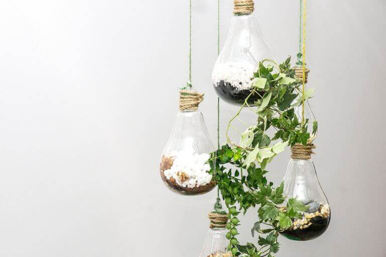 vertikal have med lyspærer
