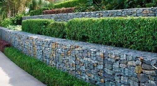 Gabionvægge vil være perfekt til haven