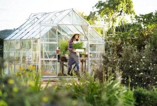 kvinde der har et drivhus i sin have