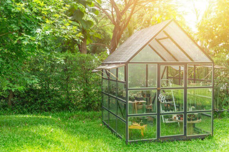 lille drivhus i en have