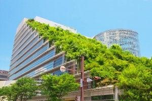 en grøn side på en hel bygning som grønt tag