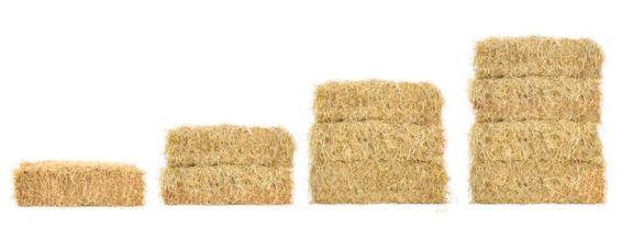 Svampe dyrkes normalt på halmballer.