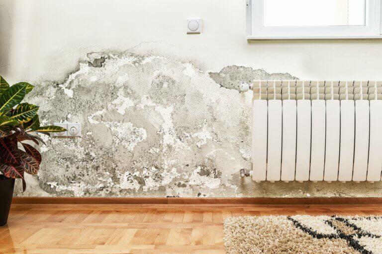luftforurening i dit hjem pga. vandskade