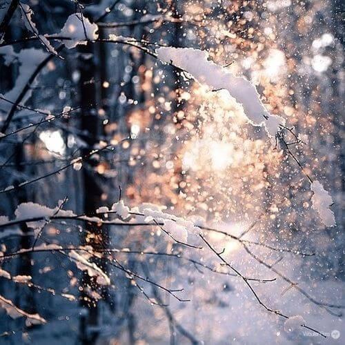 Nødvendigheder til vinteren: Gør dit hjem klar til vinter