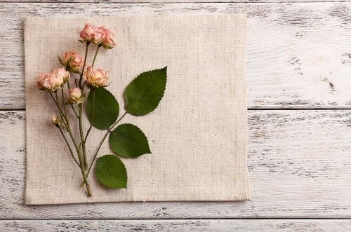 Vaser med tørrede blomster - her er de bedste slags!