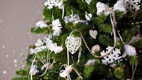 Sådan vælger du det rigtige juletræ