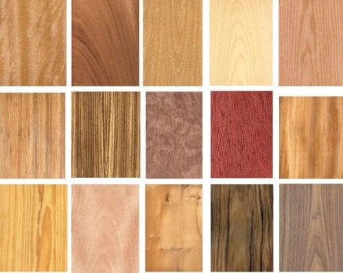forskellige slags træ
