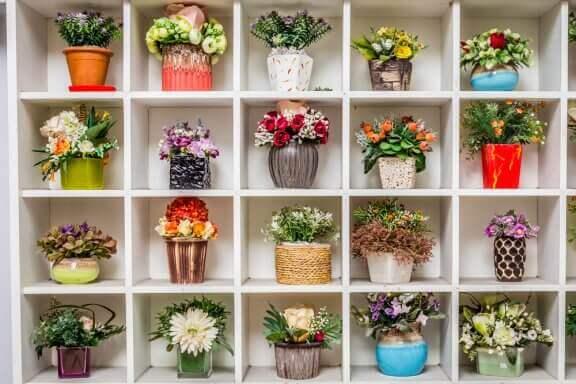 hylde fyldt med blomsterpotter
