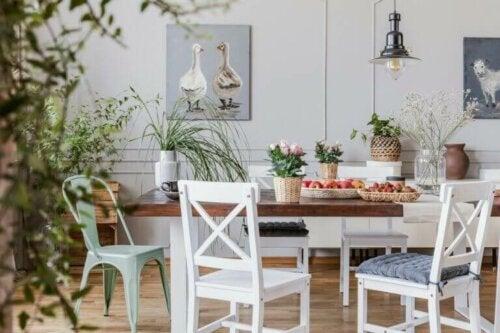 Tips til at arrangere dine planter i dit hjem