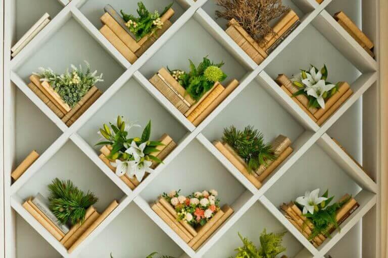 måde at arrangere planter på i dit hjem