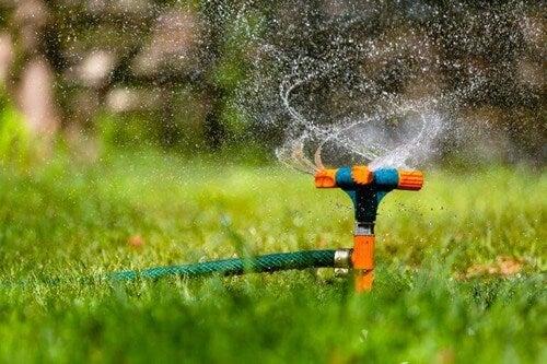 En automatisk havesprinkler