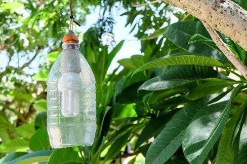 Gode tips til at genbruge plastikflasker