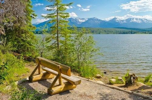 Træbænk med flot udsigt over vandet