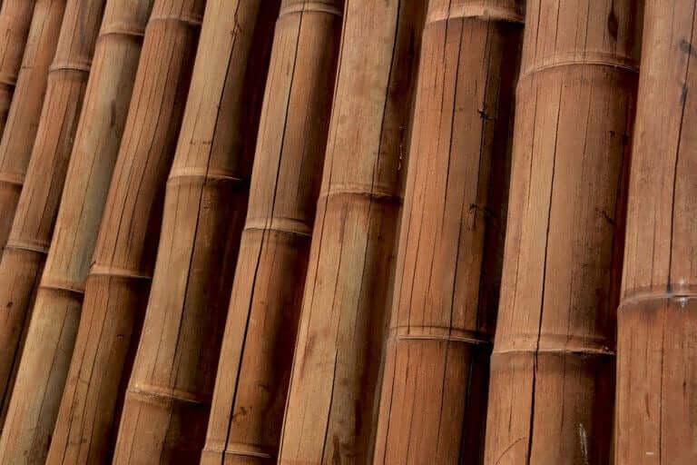 Guadua Bambus - Et moderne materiale