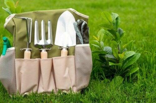 haveredskaber på græs