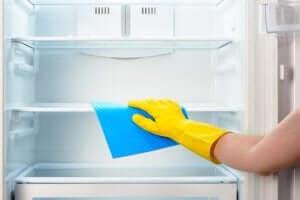 gør køleskab rent