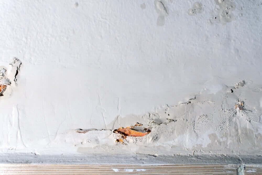 væg med fugtproblemer