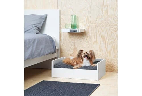 Kollektion til kæledyr - fra IKEA til behårede venner