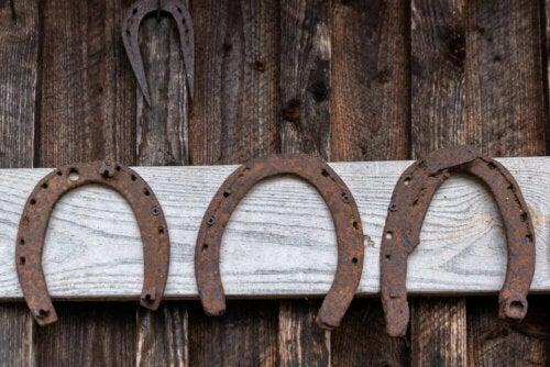 hestesko på væg
