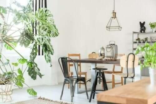 Indretningsdesign der bruger planter som dekoration