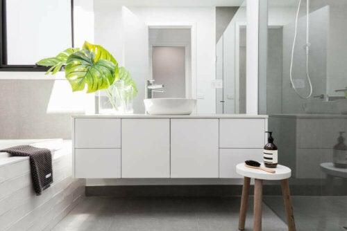hvidt badeværelse med stor plante