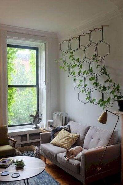 Klatreplanter i stuen