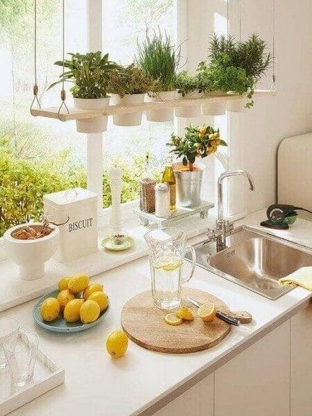 Tips til at udsmykke med hængeplanter i køkkenet