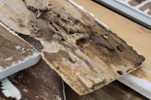 tips til at restaurere slidte trægulve