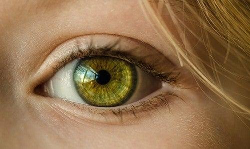Menneskeøjet kan se mange forskellige farver