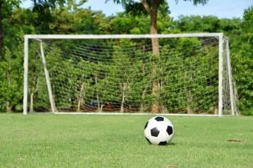 Lav en fodboldbane i din baghave