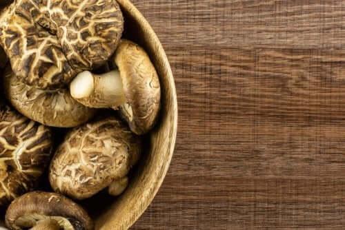 Indretning med tørrede paddehatte og svampe
